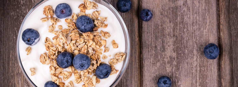 Organic Yoghurt Panna Cotta